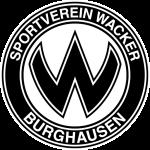 prediksi-skor-burghausen-fv-illertissen-16-mei-2016