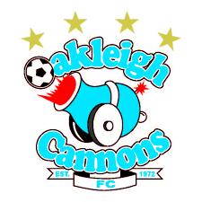 prediksi-oakleigh-cannons-melbourne-knights-24-juli-2016